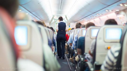 Here's how to protect yourself from airplane cooties