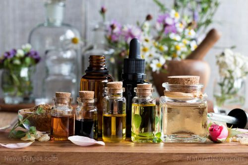 What are the clinical applications of essential oils?