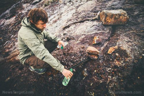 Prevent dehydration when SHTF by learning how to find and purify water