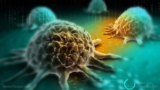 Cancer hates oxygen: Research shows that a shortage of oxygen in the cells is how many cancer tumors grow