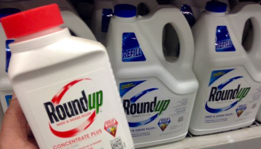 Monsanto's RoundUp is more dangerous than we realized: Even the inert ingredients have proven to be dangerous
