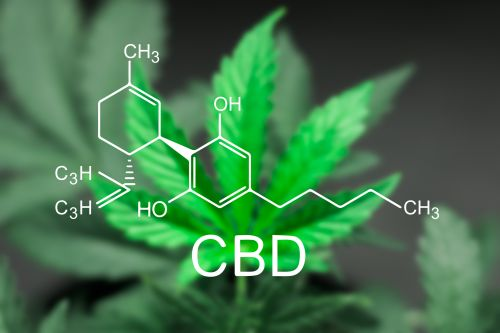 New mouse study finds level of liver toxicity for CBD