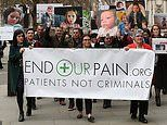 Families of severely epileptic children to protest and demand medicinal cannabis