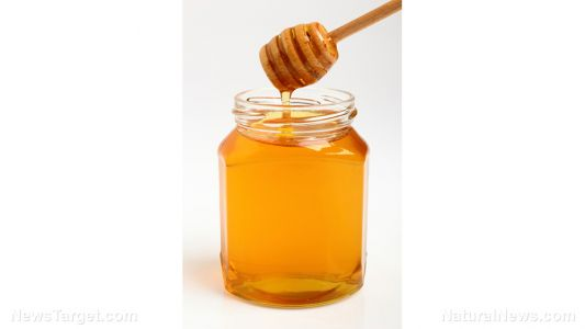 7 Reasons to have Manuka honey in your survival stockpile