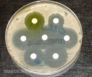 Increase in Local Temperature Associated With Higher Antibiotic Resistance