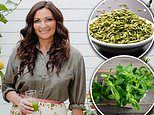 Australian nutritionist reveals the six spices to add to your diet to transform gut health