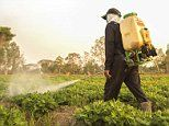 Warning on the world's most common pesticide