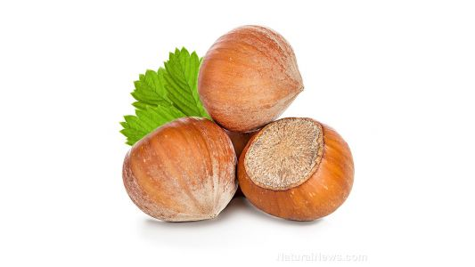 """Repurposing food supply """"waste"""" has many benefits: Farmers in Turkey are using the husks of hazelnuts as mulch, preserving water and reducing labor"""