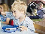 Australian kids outgrow food allergy by the age of four