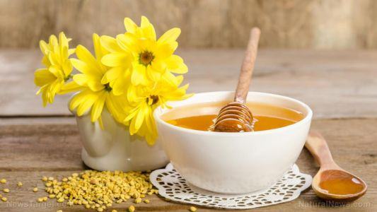 Honey can help you recover from the flu faster - are you surprised that it's the oldest known antibiotic?