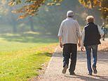Walking for 35 minutes a day could halve elderly people's risk of a severe stroke, study claims