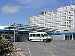 Hospitals are turning to VETS to fill staffing gaps on intensive care wards amid coronavirus