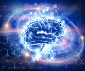 Important Aspects of Brain's Navigation System Identified