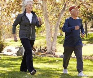 Mid-brain Circuits may Regulate Speed and Gait While Walking