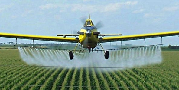 Top 10 foods and beverages you probably had NO IDEA contain chemical pesticides