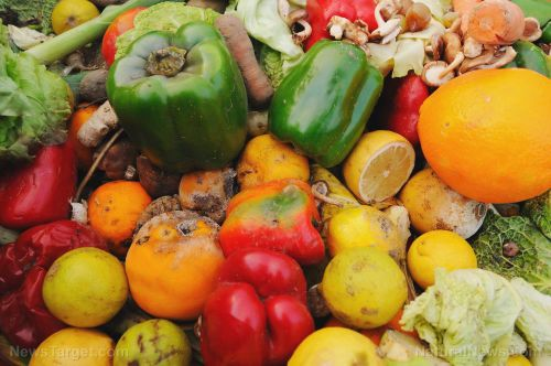 SHOCK: Americans waste around 150,000 tons of food every day