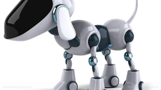 "New artificial ""robot nose"" could soon replace dogs for sniffing out narcotics and explosives"