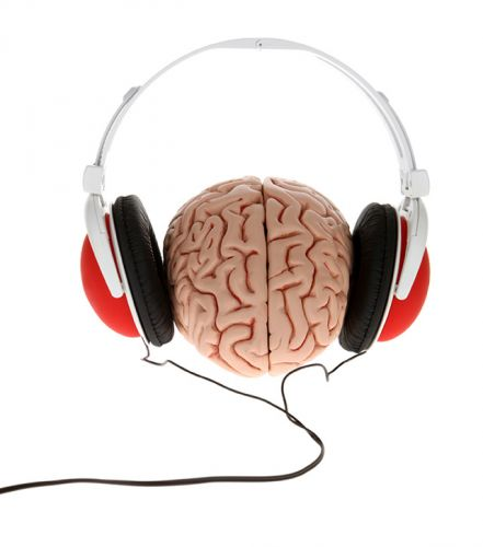 Why do you like specific music over others? Turns out our expectations and biases greatly impact how our brain responds to music