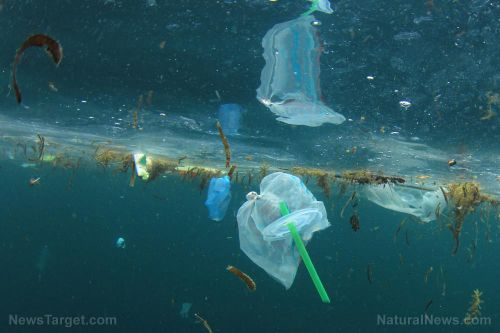 Clean up your act: Study finds amount of plastic in the ocean still increasing at an alarming rate