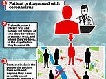 UK's test, trace and isolate scheme will only cut infections by 5%, scientists warn
