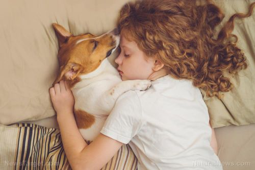 """Man's best friend: Emotional support animals are """"legitimate therapeutic interventions,"""" researchers say"""