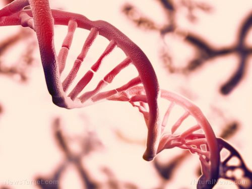 Breakthrough technology allows scientists to collect DNA from the air