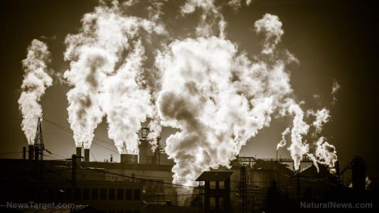 Study finds air pollution is more likely to make you sick than inherited risk factors