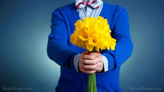 Common pesticides sprayed on decorative flowers confirmed to cause serious neurological problems in children