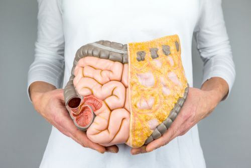"""""""Citizen scientists"""" sought to help identify the gut microbiome's relationship to food"""