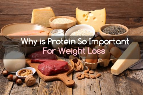 Why is Protein Important For Serious, Sustained Weight Loss?