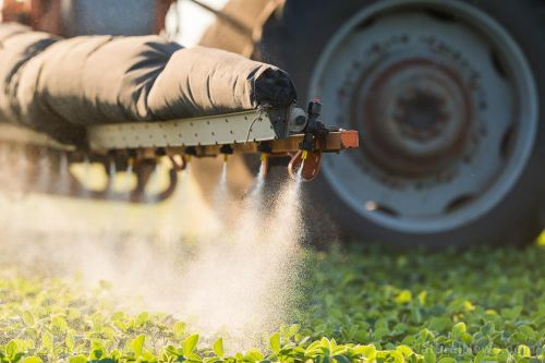 Study: Exposure to pesticides during pregnancy increases a child's risk of autism by nearly 10 percent