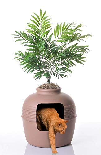 This Litter Box Looks Like A Chic Plant, So You Don't Even Have To Hide It