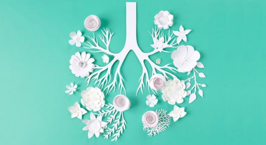Natural Ways to Protect Your Lung Health