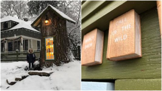 Woman Carves Magical 'Little Free Library' Out Of 110-Year-Old Tree