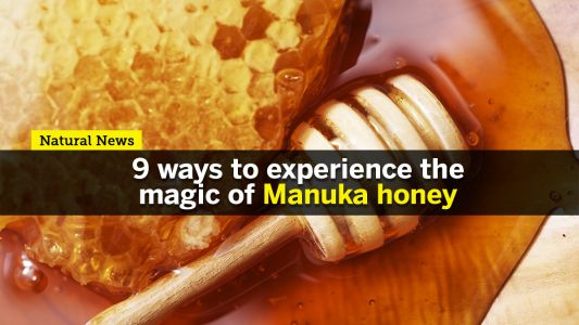 Nine ways to experience the magic of Manuka honey