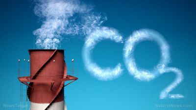 Carbon dioxide 'pollutant' myth totally DEBUNKED in must-see science video