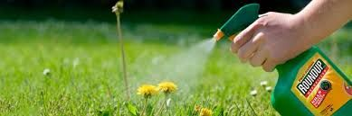 Health Ranger BOMBSHELL: You'd have to drink 41,000 liters of beer to get the same exposure to glyphosate as just a few drops on your skin of glyphosate weedkiller used in landscaping