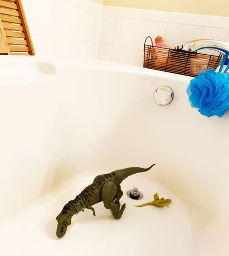 What I Realized When I Found Dinosaurs In My Bathtub