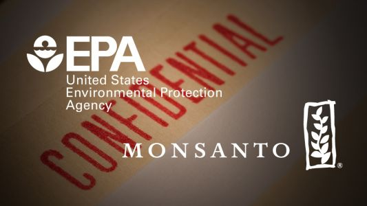 Evidence the corrupt EPA colluded with Monsanto to delay toxicology review of their controversial herbicide glyphosate