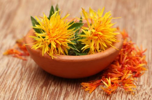 Safflower seeds prevent kidney damage caused by chemotherapy
