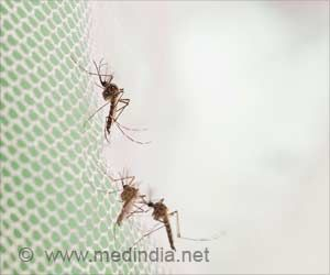 Pregnant Women, Young Children More Likely to Use Mosquito Nets to Prevent Malaria