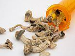 'Magic mushrooms' are one step closer to treating depression