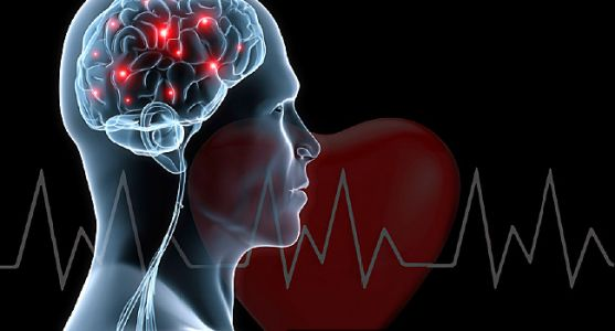Heart Trouble Can Speed Brain Decline, Study Says