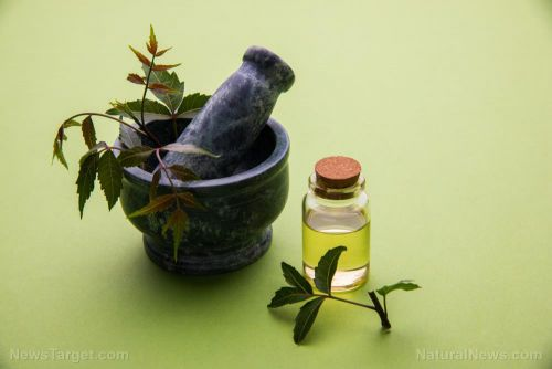 Use antioxidant-rich neem oil to address skin conditions like acne and eczema