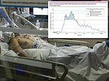 COVID-19 patients treated in ICUs during pandemic peaks were twice as likely to die