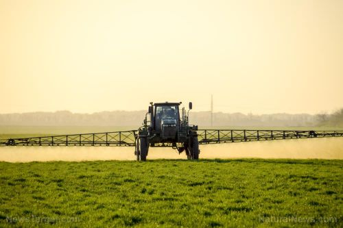 FOOD SUPPLY in jeopardy: US farmers getting hit hard by coronavirus, even with record levels of financial aid