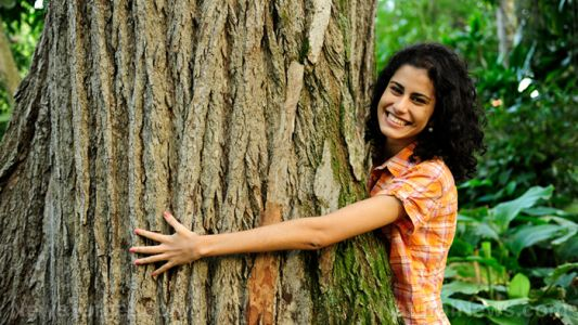 Trees are good for your emotional health: Study determines living on the edge of a forest is good for your brain
