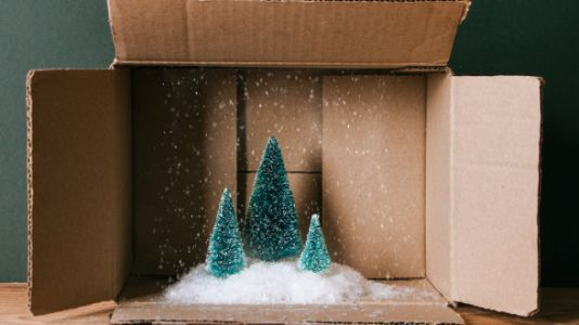 Amazon Will Now Deliver A Live 7-Foot Tree To Your Door