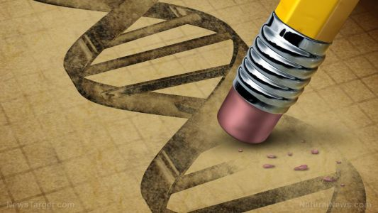 GM humans: New vaccines made with synthetic genes will alter your DNA