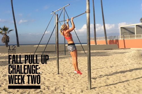 Fall Pull Up Challenge: Week 2